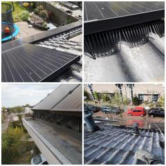Toepassen vogelwerend materiaal bij zonnepanelen